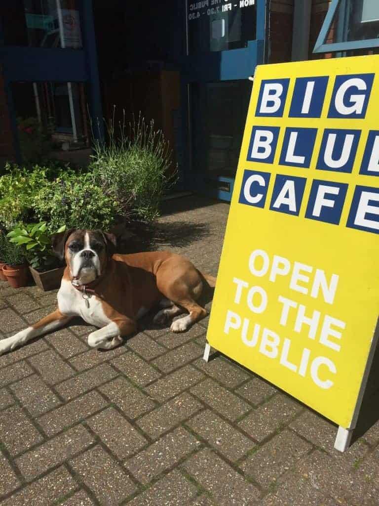 Big Blue Cafe